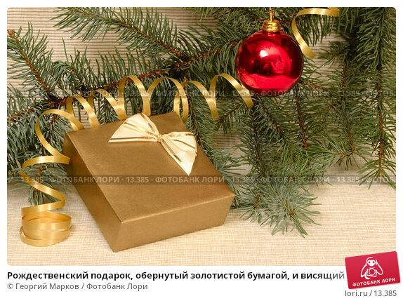 Рождественский подарок, обернутый золотистой бумагой, и висящий на елочной ветке красный шар, фото № 13385, снято 11 ноября 2006 г. (c) Георгий Марков / Фотобанк Лори