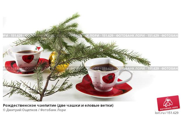 Рождественское чаепитие (две чашки и еловые ветки), фото № 151629, снято 22 ноября 2006 г. (c) Дмитрий Ощепков / Фотобанк Лори