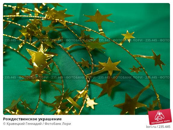 Рождественское украшение, фото № 235445, снято 22 января 2017 г. (c) Кравецкий Геннадий / Фотобанк Лори