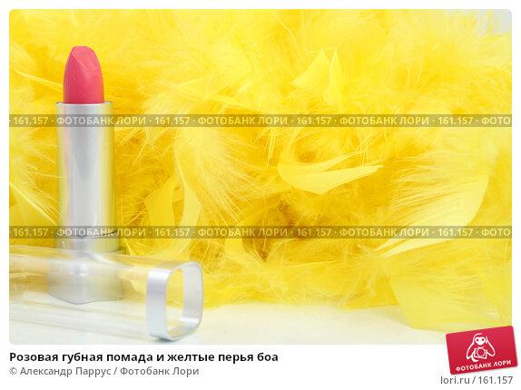 Розовая губная помада и желтые перья боа, фото № 161157, снято 25 июня 2007 г. (c) Александр Паррус / Фотобанк Лори