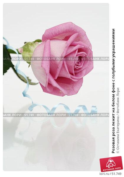 Розовая роза лежит на белом фоне с голубыми украшениями, фото № 51749, снято 29 марта 2007 г. (c) Останина Екатерина / Фотобанк Лори