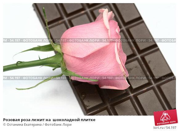 Розовая роза лежит на  шоколадной плитке, фото № 54197, снято 21 февраля 2007 г. (c) Останина Екатерина / Фотобанк Лори