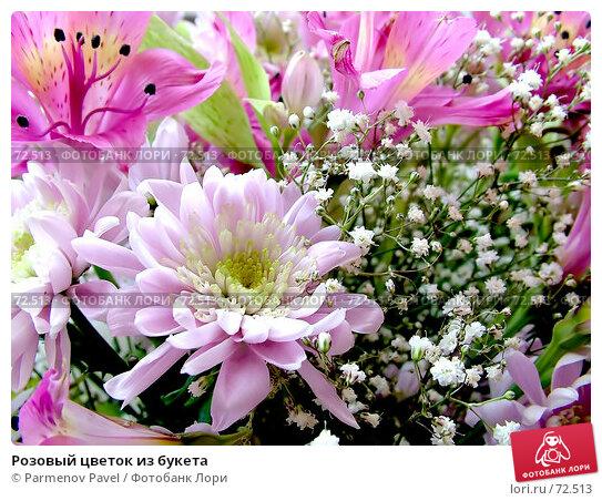 Розовый цветок из букета, фото № 72513, снято 16 марта 2006 г. (c) Parmenov Pavel / Фотобанк Лори