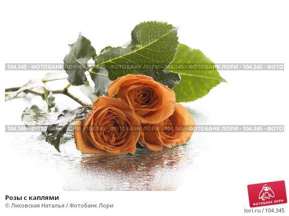 Розы с каплями, фото № 104345, снято 22 февраля 2017 г. (c) Лисовская Наталья / Фотобанк Лори