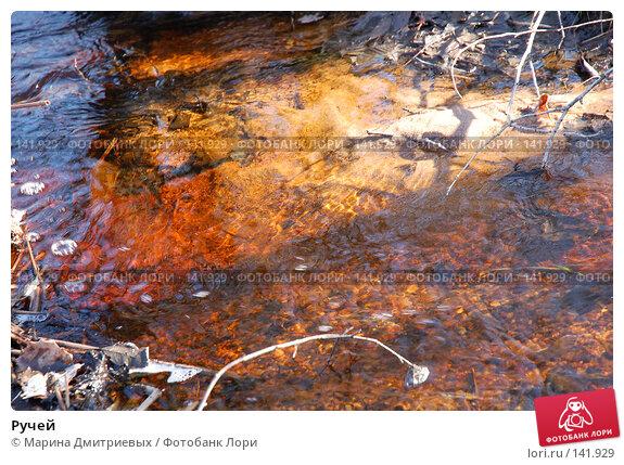 Купить «Ручей», фото № 141929, снято 1 апреля 2007 г. (c) Марина Дмитриевых / Фотобанк Лори