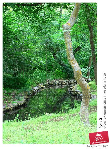Ручей, фото № 318077, снято 8 июня 2008 г. (c) Сергей Литвиненко / Фотобанк Лори