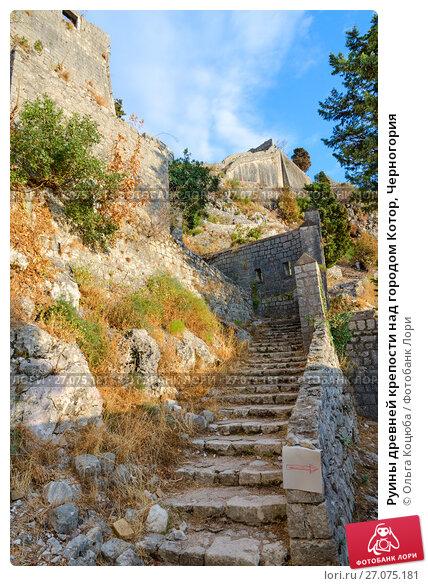 Купить «Руины древней крепости над городом Котор, Черногория», фото № 27075181, снято 8 сентября 2017 г. (c) Ольга Коцюба / Фотобанк Лори