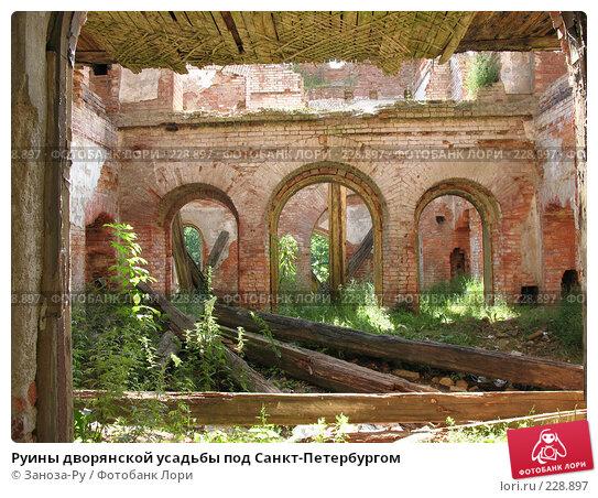 Руины дворянской усадьбы под Санкт-Петербургом, фото № 228897, снято 12 августа 2007 г. (c) Заноза-Ру / Фотобанк Лори
