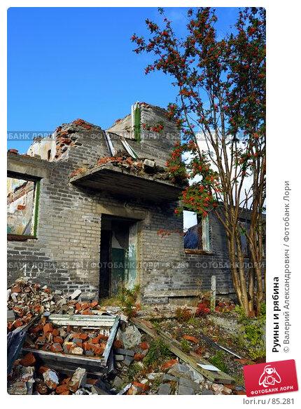 Руины и рябина, фото № 85281, снято 6 декабря 2016 г. (c) Валерий Александрович / Фотобанк Лори