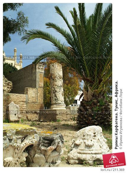 Купить «Руины Карфагена. Тунис, Африка.», фото № 211369, снято 12 июня 2006 г. (c) Ирина Игумнова / Фотобанк Лори