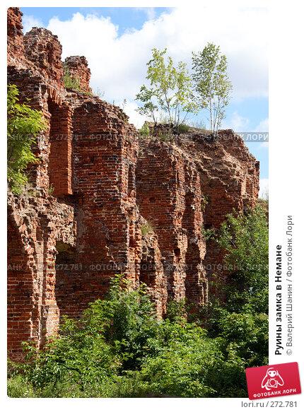 Руины замка в Немане, фото № 272781, снято 26 июля 2007 г. (c) Валерий Шанин / Фотобанк Лори
