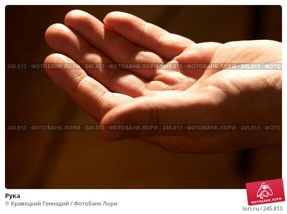 Рука, фото № 245813, снято 26 февраля 2005 г. (c) Кравецкий Геннадий / Фотобанк Лори