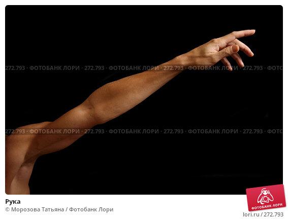 Рука, фото № 272793, снято 7 апреля 2008 г. (c) Морозова Татьяна / Фотобанк Лори