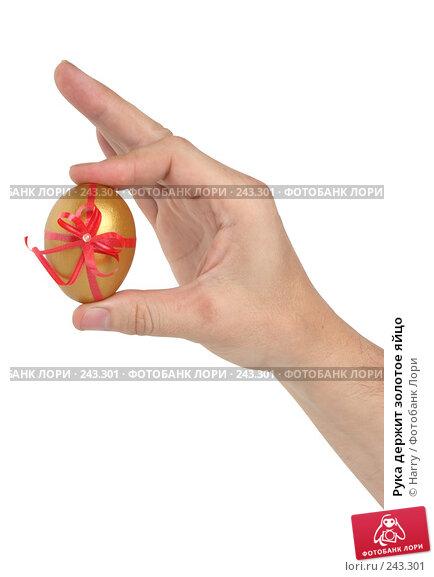 Рука держит золотое яйцо, фото № 243301, снято 3 октября 2007 г. (c) Harry / Фотобанк Лори