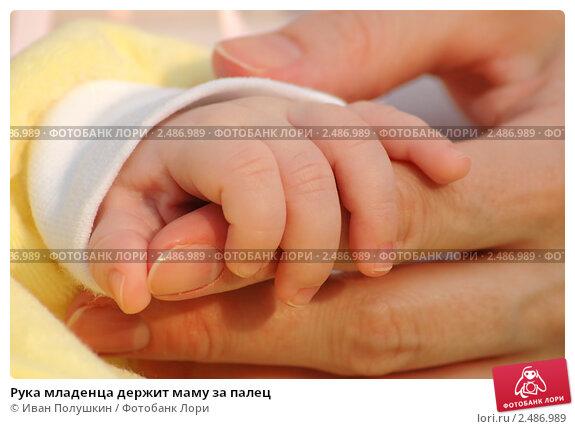 Купить «Рука младенца держит маму за палец», фото № 2486989, снято 1 сентября 2007 г. (c) Иван Полушкин / Фотобанк Лори