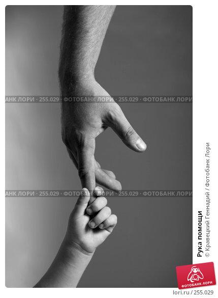 Рука помощи, фото № 255029, снято 26 апреля 2017 г. (c) Кравецкий Геннадий / Фотобанк Лори