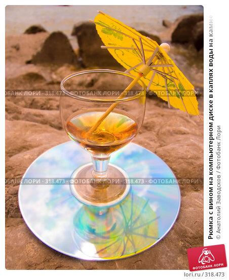 Рюмка с вином на компьютерном диске в каплях воды на камне, фото № 318473, снято 27 мая 2006 г. (c) Анатолий Заводсков / Фотобанк Лори