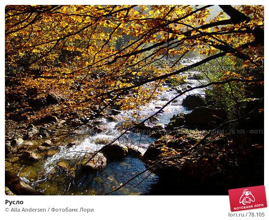 Купить «Русло», фото № 78105, снято 27 октября 2006 г. (c) Alla Andersen / Фотобанк Лори