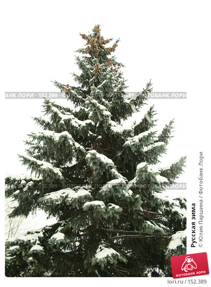 Русская зима, фото № 152389, снято 17 ноября 2007 г. (c) Юлия Паршина / Фотобанк Лори