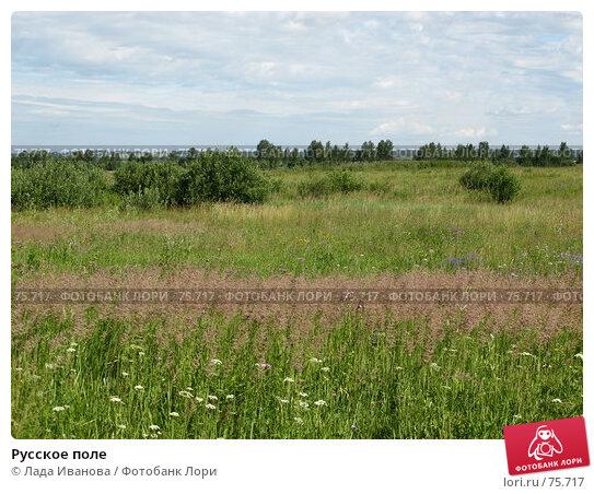 Русское поле, фото № 75717, снято 16 июля 2007 г. (c) Лада Иванова / Фотобанк Лори