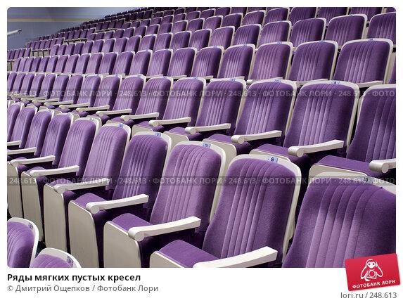 Ряды мягких пустых кресел, фото № 248613, снято 11 апреля 2008 г. (c) Дмитрий Ощепков / Фотобанк Лори
