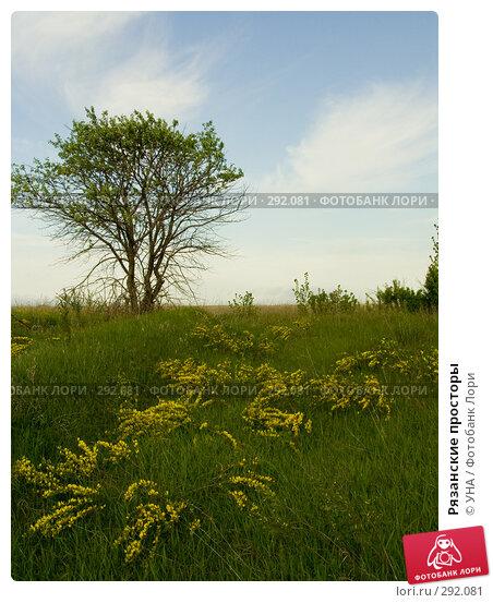 Рязанские просторы, фото № 292081, снято 17 мая 2008 г. (c) УНА / Фотобанк Лори