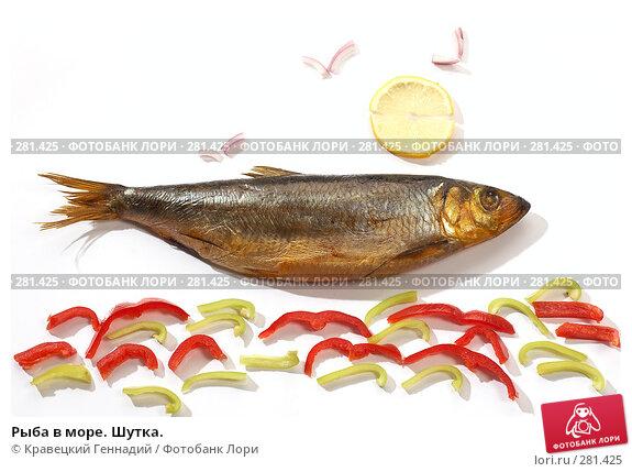 Рыба в море. Шутка., фото № 281425, снято 21 сентября 2005 г. (c) Кравецкий Геннадий / Фотобанк Лори
