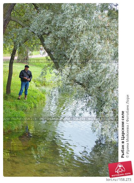 Купить «Рыбак в Царском селе», эксклюзивное фото № 158273, снято 16 сентября 2007 г. (c) Ирина Мойсеева / Фотобанк Лори