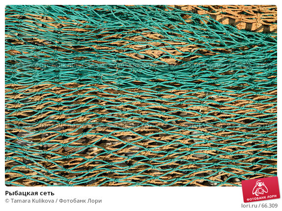 Купить «Рыбацкая сеть», фото № 66309, снято 29 июля 2007 г. (c) Tamara Kulikova / Фотобанк Лори
