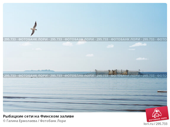 Рыбацкие сети на Финском заливе, фото № 295733, снято 11 мая 2008 г. (c) Галина Ермолаева / Фотобанк Лори