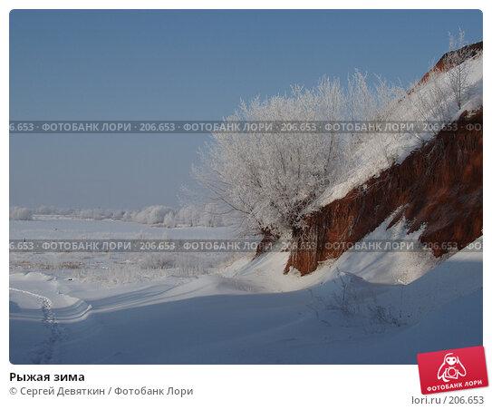 Рыжая зима, фото № 206653, снято 8 февраля 2008 г. (c) Сергей Девяткин / Фотобанк Лори