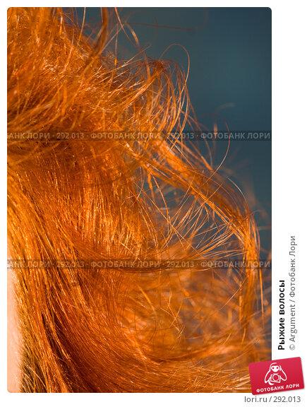 Купить «Рыжие волосы», фото № 292013, снято 24 апреля 2008 г. (c) Argument / Фотобанк Лори