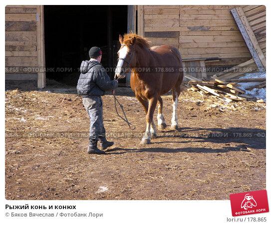 Рыжий конь и конюх, фото № 178865, снято 30 марта 2007 г. (c) Бяков Вячеслав / Фотобанк Лори