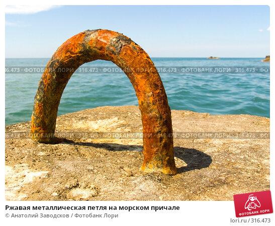 Ржавая металлическая петля на морском причале, фото № 316473, снято 27 мая 2006 г. (c) Анатолий Заводсков / Фотобанк Лори