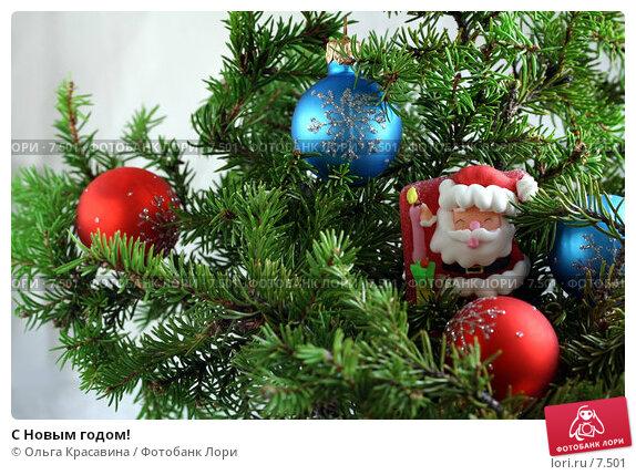 Купить «С Новым годом!», фото № 7501, снято 23 августа 2006 г. (c) Ольга Красавина / Фотобанк Лори