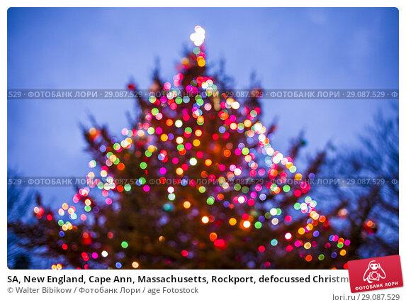 Купить «SA, New England, Cape Ann, Massachusetts, Rockport, defocussed Christmas tree.», фото № 29087529, снято 2 декабря 2017 г. (c) age Fotostock / Фотобанк Лори