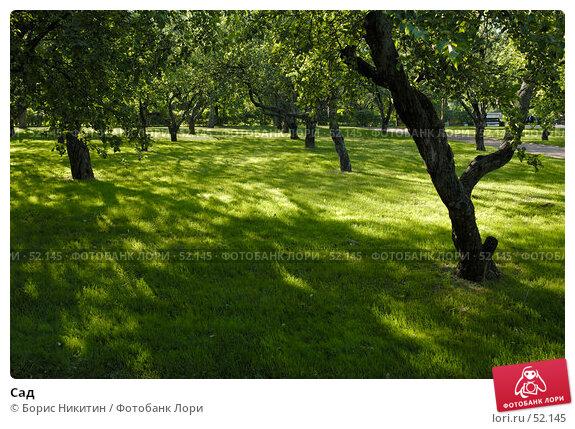 Сад, фото № 52145, снято 2 июня 2007 г. (c) Борис Никитин / Фотобанк Лори