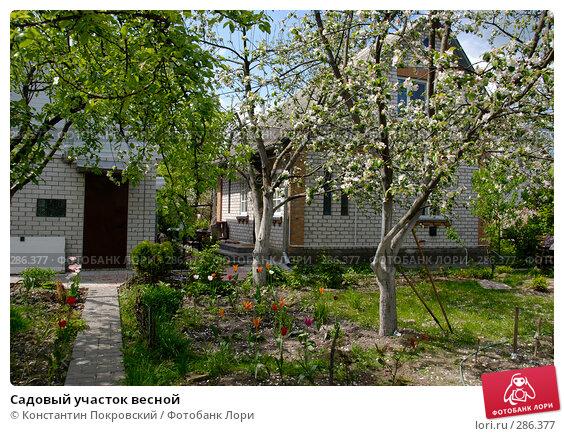 Садовый участок весной, фото № 286377, снято 11 мая 2008 г. (c) Константин Покровский / Фотобанк Лори