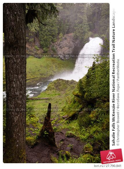 Купить «Sahalie Falls McKenzie River National Recreation Trail Nature Landscape», фото № 27790841, снято 22 февраля 2018 г. (c) PantherMedia / Фотобанк Лори