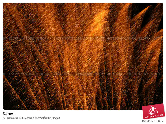 Салют, фото № 12077, снято 4 ноября 2006 г. (c) Tamara Kulikova / Фотобанк Лори