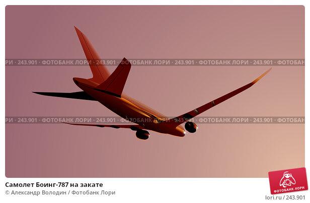 Купить «Самолет Боинг-787 на закате», иллюстрация № 243901 (c) Александр Володин / Фотобанк Лори
