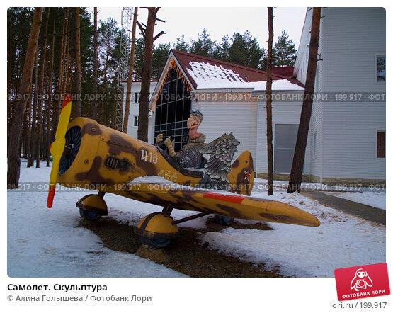 Самолет. Скульптура, эксклюзивное фото № 199917, снято 11 февраля 2008 г. (c) Алина Голышева / Фотобанк Лори