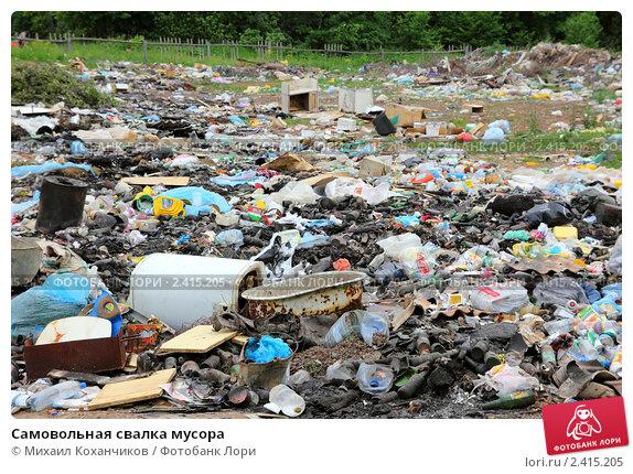 Купить «Самовольная свалка мусора», фото № 2415205, снято 5 июня 2010 г. (c) Михаил Коханчиков / Фотобанк Лори