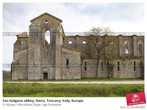 Купить «San Galgano abbey, Siena, Tuscany, Italy, Europe.», фото № 28250053, снято 24 апреля 2013 г. (c) age Fotostock / Фотобанк Лори