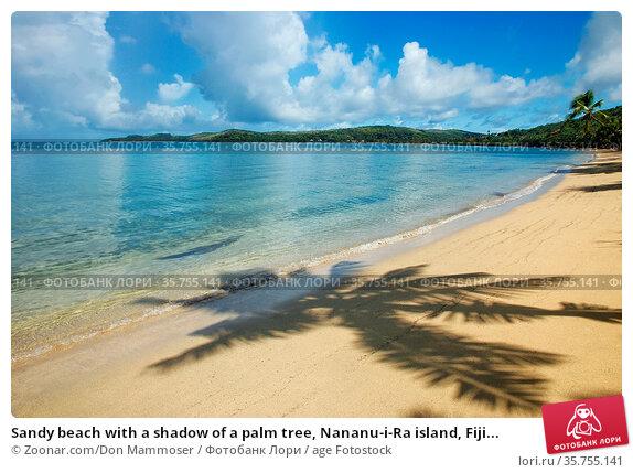 Sandy beach with a shadow of a palm tree, Nananu-i-Ra island, Fiji... Стоковое фото, фотограф Zoonar.com/Don Mammoser / age Fotostock / Фотобанк Лори