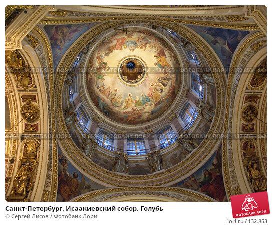 Санкт-Петербург. Исаакиевский собор. Голубь, фото № 132853, снято 31 декабря 2005 г. (c) Сергей Лисов / Фотобанк Лори