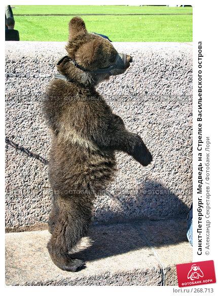 Купить «Санкт-Петербург. Медведь на Стрелке Васильевского острова», фото № 268713, снято 28 июня 2005 г. (c) Александр Секретарев / Фотобанк Лори