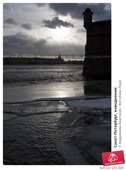Купить «Санкт-Петербург, наводнение», фото № 231329, снято 3 февраля 2008 г. (c) Андрюхина Анастасия / Фотобанк Лори