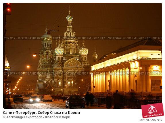 Купить «Санкт-Петербург. Собор Спаса на Крови», фото № 207917, снято 17 декабря 2005 г. (c) Александр Секретарев / Фотобанк Лори
