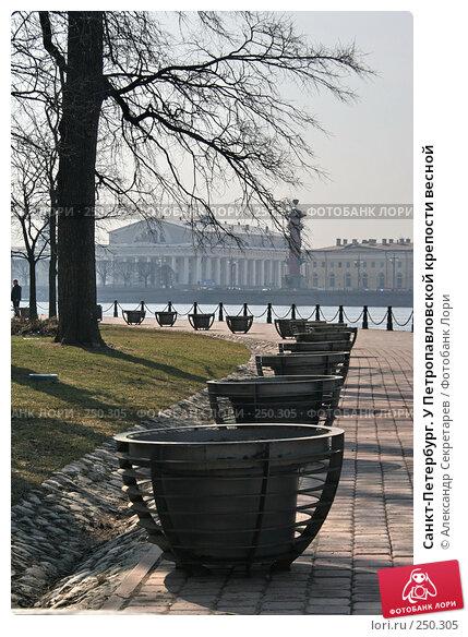 Санкт-Петербург. У Петропавловской крепости весной, фото № 250305, снято 5 апреля 2008 г. (c) Александр Секретарев / Фотобанк Лори